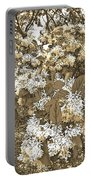 Waxleaf Privet Blooms On A Sunny Day In Sepia Tones Portable Battery Charger