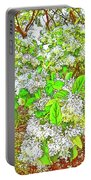 Waxleaf Privet Blooms On A Sunny Day Portable Battery Charger