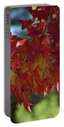 Wearing Red For Fall Portable Battery Charger