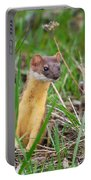 Weasel Portable Battery Charger