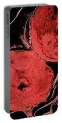 Weathered Poppies Portable Battery Charger