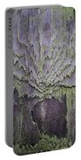 Weathered Wood And Lichen Abstract Portable Battery Charger