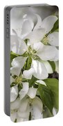 Welcoming Spring Portable Battery Charger
