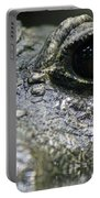 West African Dwarf Crocodile - Captive 04 Portable Battery Charger
