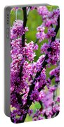 Westcreek Reservation 2 Portable Battery Charger