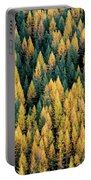 Western Larch Forest Portable Battery Charger