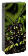 Wet Butterfly Portable Battery Charger