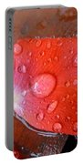 Wet Petal 1 Portable Battery Charger