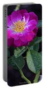 Wet Rose 2 Portable Battery Charger