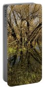 Wetlands Mirror Reflection Portable Battery Charger