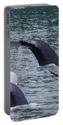 Whale Of Tales Portable Battery Charger