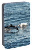 Whale Watching And Dolphins 1 Portable Battery Charger