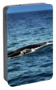 Whale Watching Balenottera Comune 3 Portable Battery Charger
