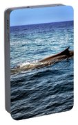 Whale Watching Balenottera Comune 4 Portable Battery Charger