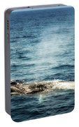 Whale Watching Balenottera Comune 5 Portable Battery Charger