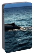Whale Watching Balenottera Comune 6 Portable Battery Charger