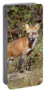 What Does The Fox Say Portable Battery Charger