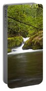 Whatcom Creek Gorge Portable Battery Charger