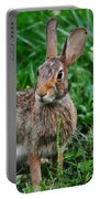Whats Up Doc Portable Battery Charger