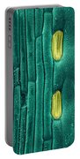 Wheat Leaf Stomata, Sem Portable Battery Charger