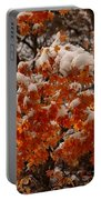 When Fall Meets Winter Portable Battery Charger