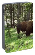 Where The Bison Roam Portable Battery Charger