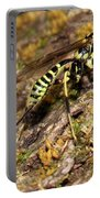 Whip Tailed Wasp Portable Battery Charger