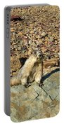 Whistle Pig Of The Rockies Portable Battery Charger