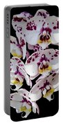 White And Magenta Orchids Portable Battery Charger