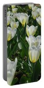 White And Pale Yellow Tulips In A Bulb Garden Portable Battery Charger