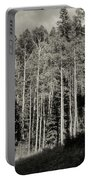 White-barked Birch Forest 3 Portable Battery Charger