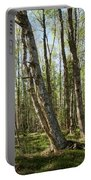 White Birch Forest Portable Battery Charger