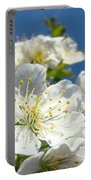 White Blossoms Art Prints Spring Tree Blossoms Canvas Baslee Troutman Portable Battery Charger