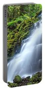 White Branch Falls Portable Battery Charger