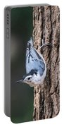 White-breasted Nuthatch Portable Battery Charger