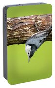White-breasted Nuthatches Portable Battery Charger