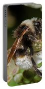 White Bumblebee Portable Battery Charger