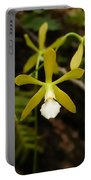 White Butterfly Orchid Portable Battery Charger