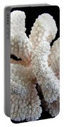 White Coral Portable Battery Charger