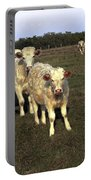 White Cows Portable Battery Charger