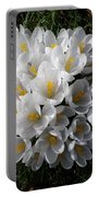 White Crocuses Portable Battery Charger