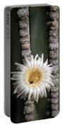 White Desert Jewel Portable Battery Charger