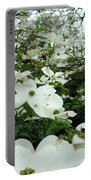 White Dogwood Flowers 6 Dogwood Tree Flowers Art Prints Baslee Troutman Portable Battery Charger