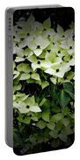 White Dogwood Portable Battery Charger
