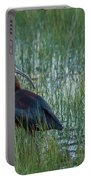 White-faced Ibis In Idaho Portable Battery Charger