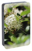 White Flowers On Canvas Portable Battery Charger