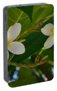 White Frangipani Flowers Portable Battery Charger