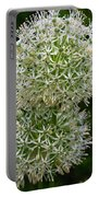 White Globe Thistle 2 Portable Battery Charger