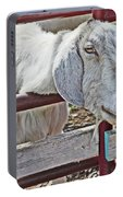 White/grey Goat Head Through Fence 2 6242018 Goat 2420.jpg Portable Battery Charger