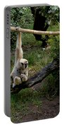White Handed Gibbon 1 Portable Battery Charger
